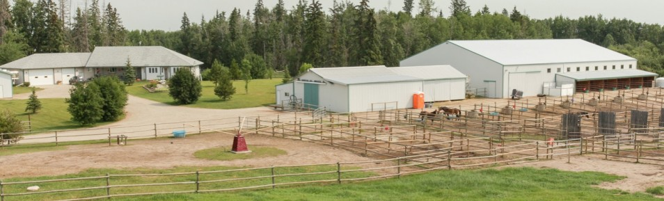 80 Acre Horse Set Up with House, Barn, Indoor Riding Arena, Shop and Much More!