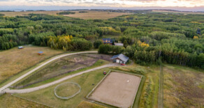 Bearspaw Horse Set Up – 16 acres 10 mins from Calgary/Cochrane